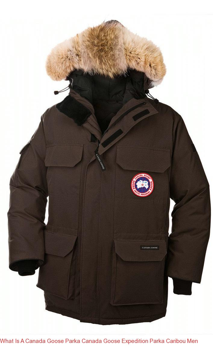 canada goose expedition parka graphite
